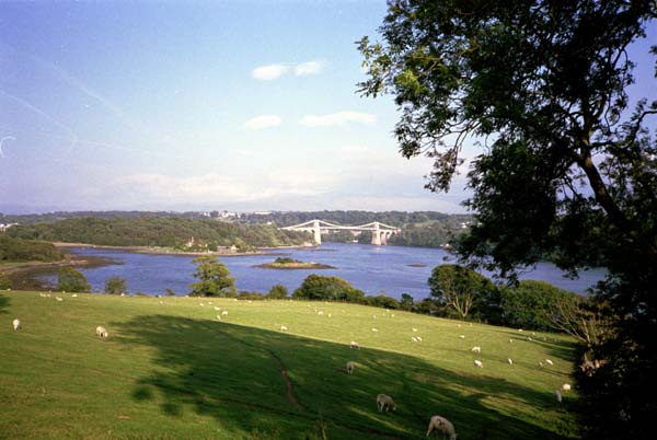 The Menai Bridge in the distance with fields and the Menai Strait in the foreground