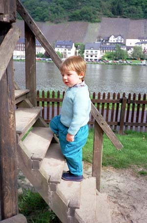 Adrian climbing some wooden steps in a park in Bernkastel, Germany, with the river Mosel in the background