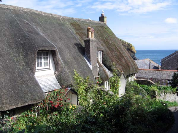 Long thatched roof