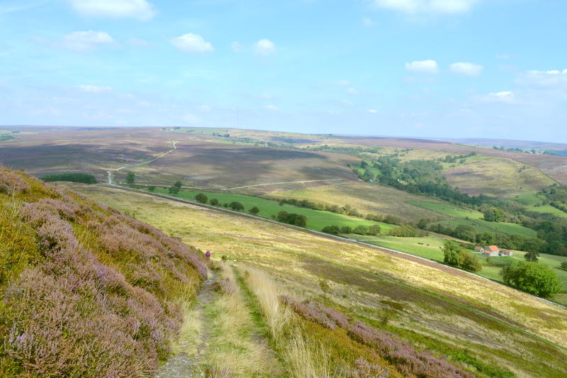 Bilsdale from Hawnby Hill