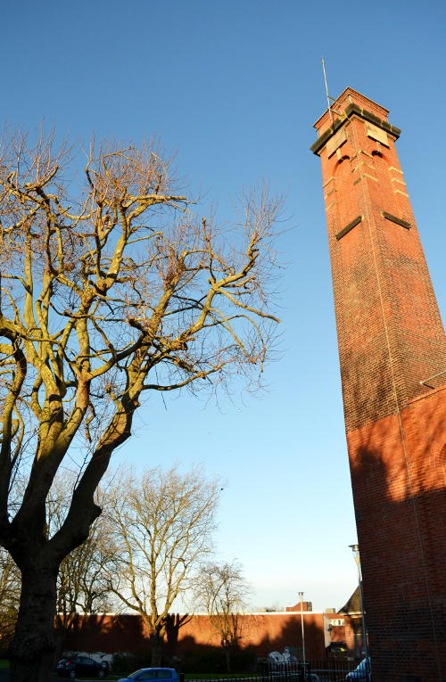 Chimney, tree and park in the sunshine