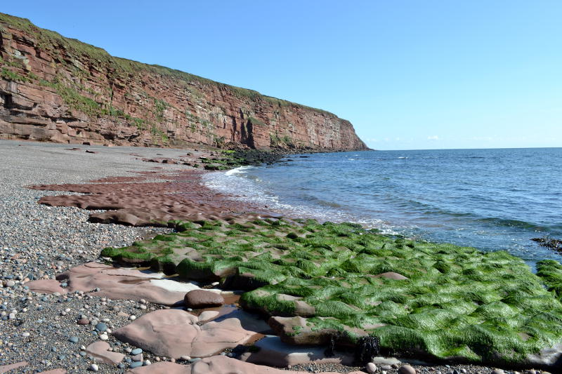 Cliffs, eroded rocks and seaweed