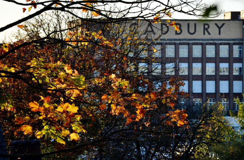 Autumn leaves in front of the Cadbury factory