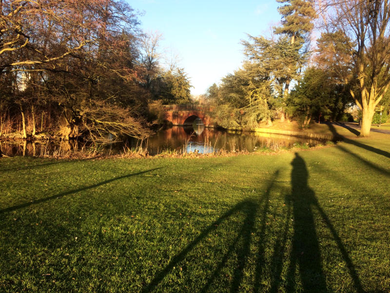 The long shadow of a bike stretching towards a pond