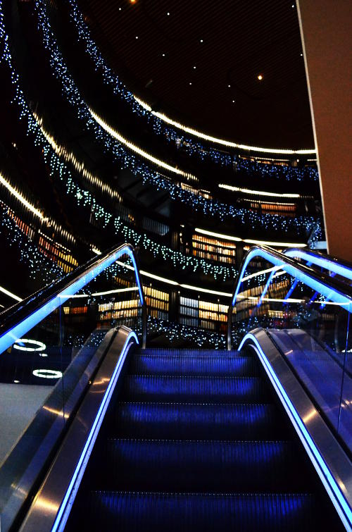 Approaching the top of the escalator to reach illuminated bookshelves