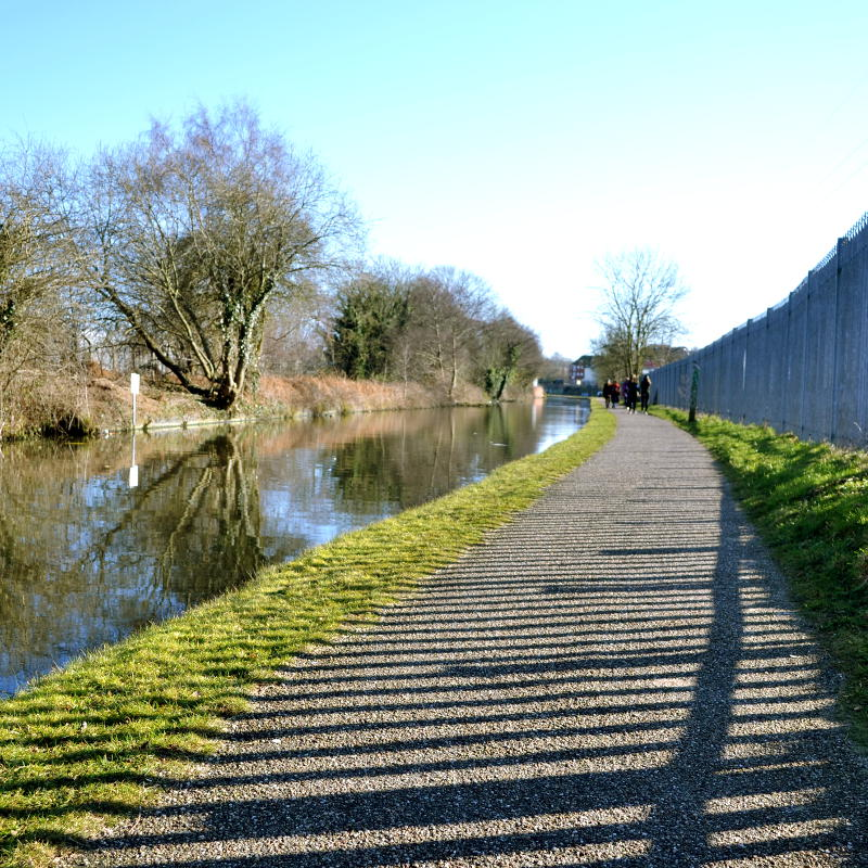 The sun shines through a metal fence alongside the towpath