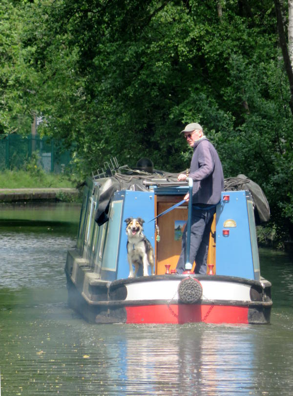 A dog and man by the tiller of a canal boat