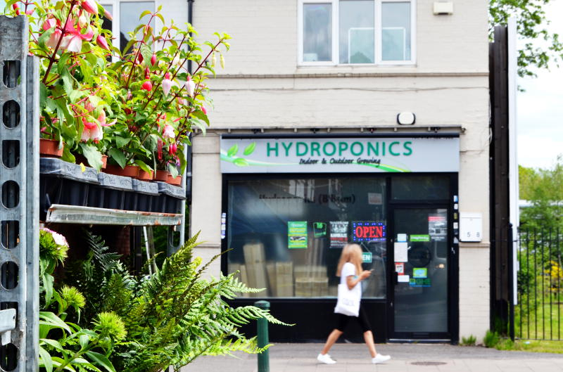 A hydroponics shop across the road from shelves of flowering plants