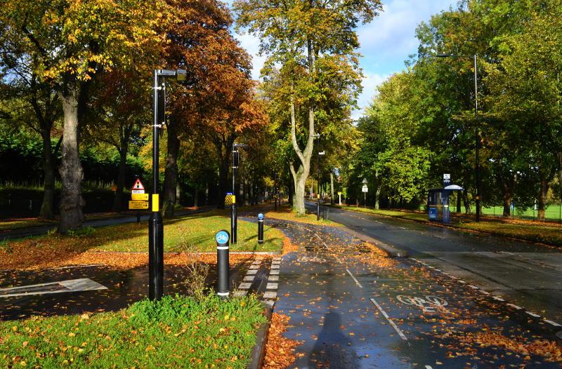 The blue cycle route through autumn trees