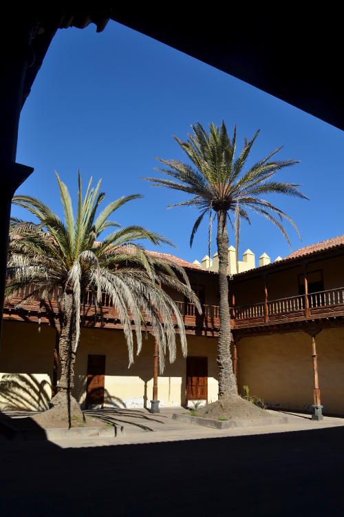 The courtyard of the Casa de los Coroneles, with two palm trees