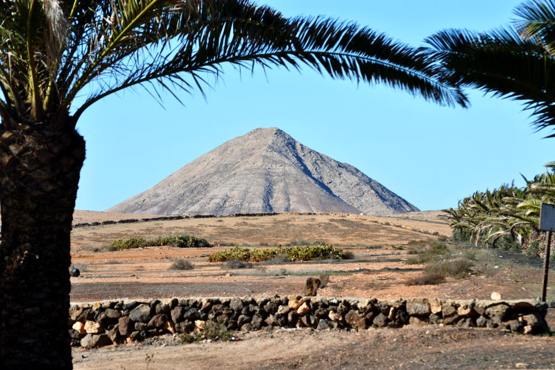 Volcanic mountain behind a palm tree