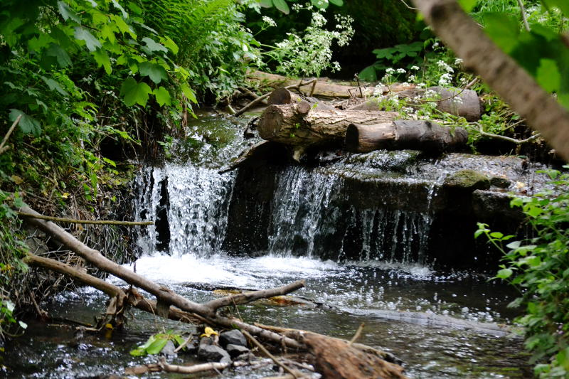 One of a cascade of 3 waterfalls on Merritts Brook in Manor Farm Park