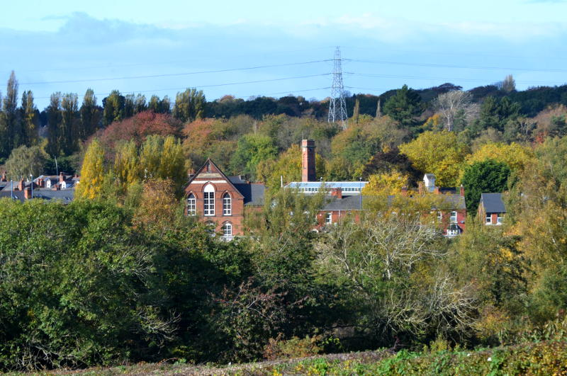 Distant view of Stirchley Baths surrounded by trees