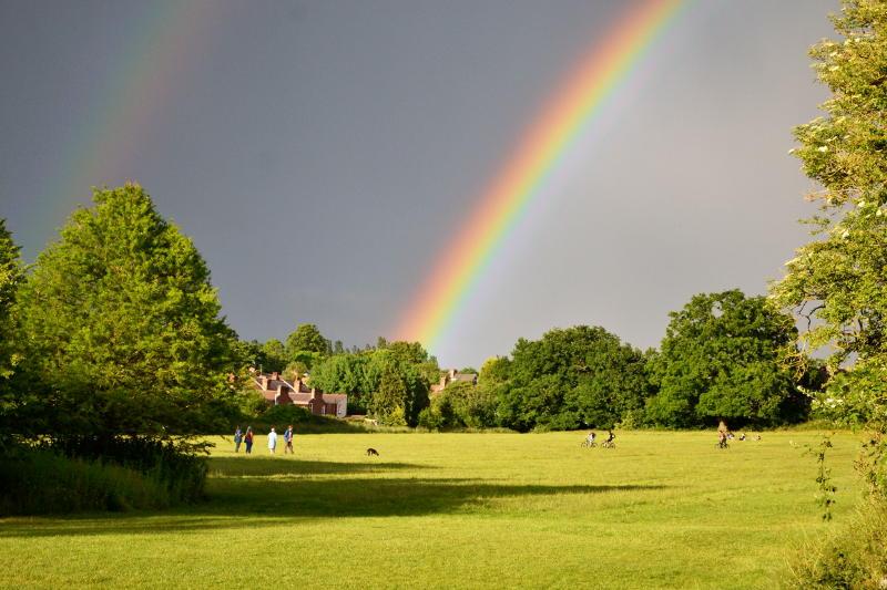 A bright rainbow over a park